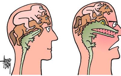 De wetenschap achter luisteren naar emoties